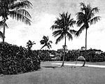 Boca Raton From Golf Course, 194-