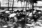 Dining Under Coconut Palms at the Boca Raton Club, 192-
