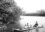Seminole Indians in a Canoe on the Miami River, 1912