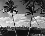 Skyline From Across Lake Worth, 1960