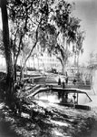 Tourists Beside the Bathing Pool at the Clarendon Hotel, Green Cove Springs, 1886