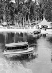 Glass Bottom Boats by Dock, Silver Springs, 1926